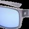Goggle E890-2P polaroid linser